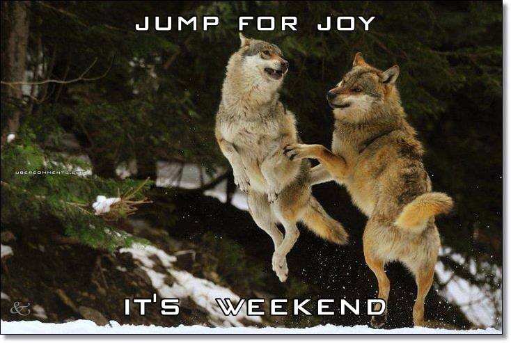 JUMP FOR JOY IT'S  WEEKEND