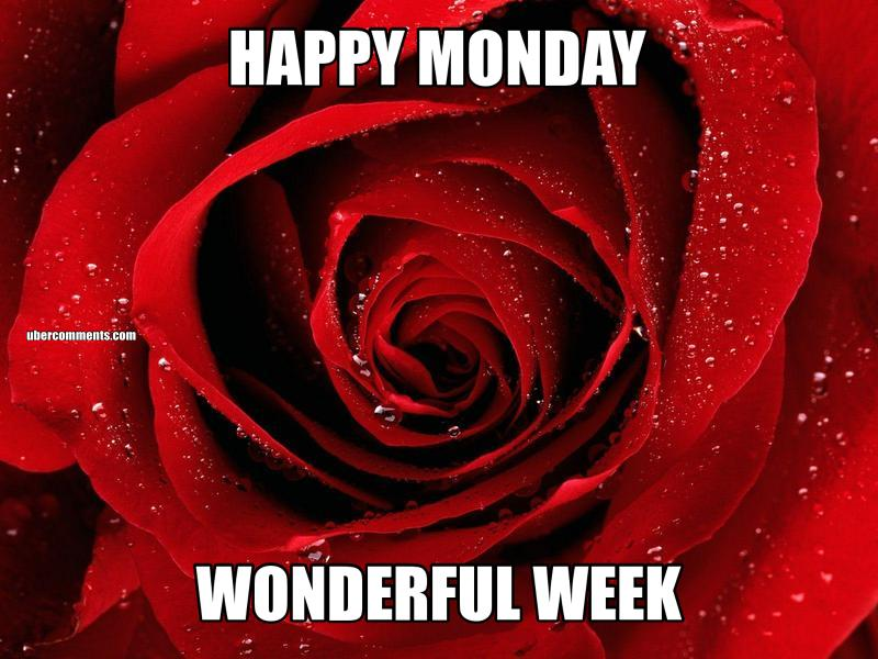 HAPPY MONDAY WONDERFUL WEEK