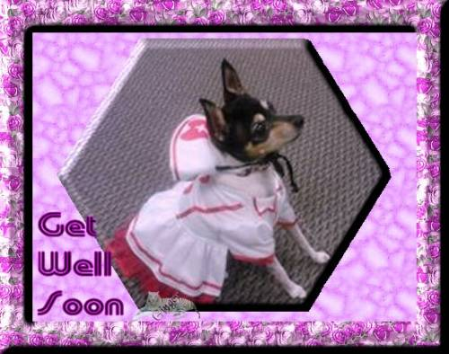 ~WT~get well