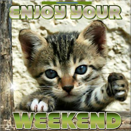 Image result for enjoy weekend