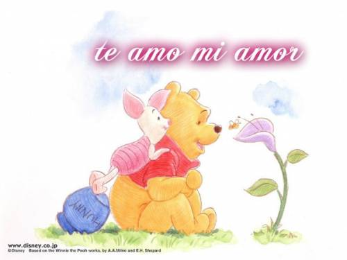 te amo mi amor - i love you