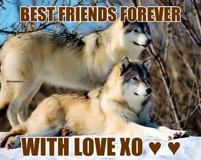 BEST FRIENDS FOREVER WITH LOVE XO ♥ ♥
