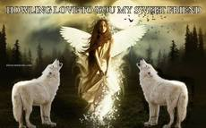 HOWLING LOVE TO YOU MY SWEET FRIEND