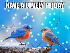 HAVE A LOVELY FRIDAY