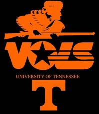 vois university of tennessee