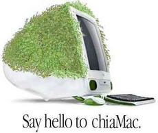 say hello to chia mac