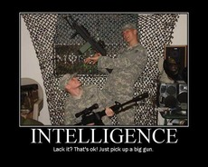 intelligence lack it? that's ok just pick up a big gun