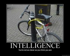 intelligence - you're not as clever as you think
