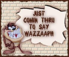 Just coming through to say wazzaap - taz