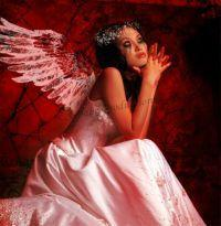 bloody angel