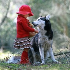 little girl and wolf