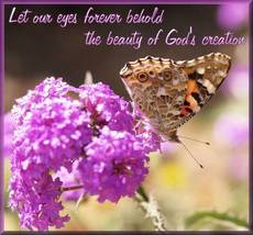 Let our eyes forever behold the beauty of God's creation