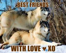 BEST FRIENDS WITH LOVE ♥ XO