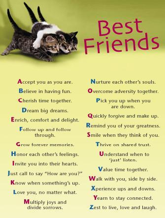 friendship quotes and pictures. Category: Friendship