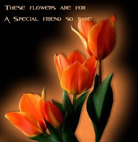 These flowers are for a special friend so rare