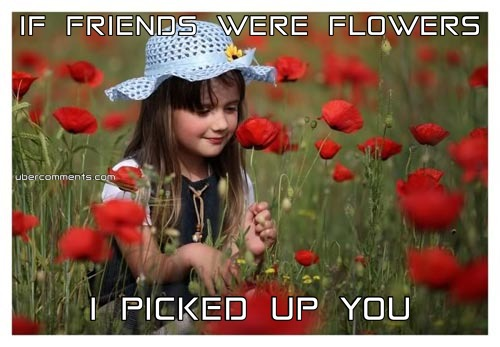 IF FRIENDS WERE FLOWERS I PICKED UP YOU