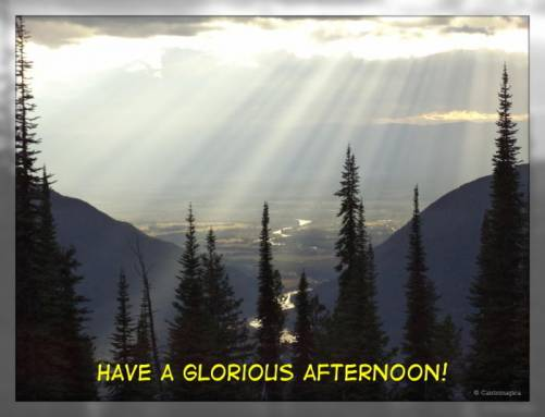 Have a glorious afternoon