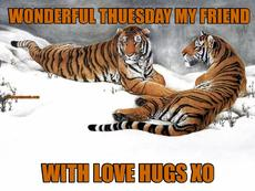 Image result for have a great tuesday hugs images