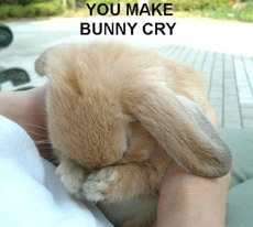 you make bunny rabbit cry