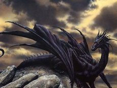 dark dragon