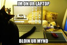 i'm on your laptop blowing your mind
