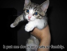 put me down or i'll eat your family