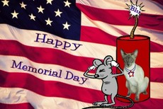 happy memorial day mouse and cat dynamite