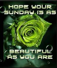 Hope Your Sunday Is As Beautiful As You Are
