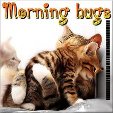 Morning hugs