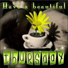 Have a beautiful Thursday