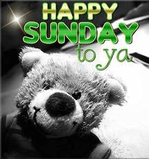 Happy Sunday to ya