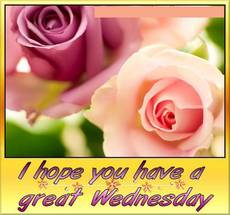 I hope you have a great Wednesday