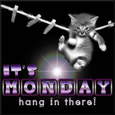 It's Monday hang in there!