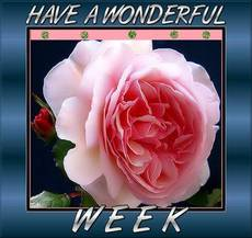 have a wonderful week